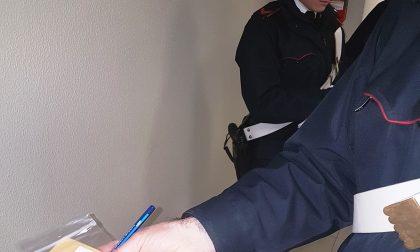 Treviglio : Retata anti-droga a scuola, due 15enni trovati con hashish dalle unità cinofile. – Treviglio TV