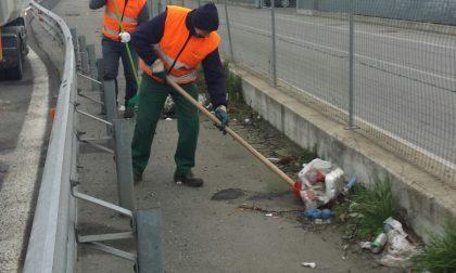Paullese – Ennesima pulizia straordinaria, raccolti 1480 chili di rifiuti