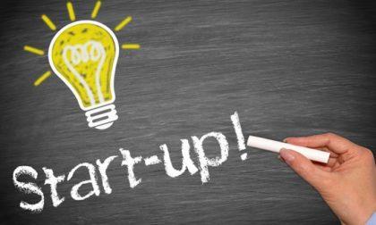 Romano – Un corso d'imprenditorialità intensivo per accendere le idee e incentivare le start up