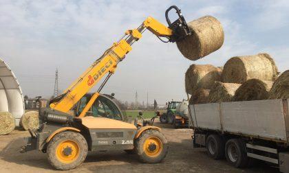 Da Treviglio un carico di 150 quintali di fieno per i terremotati di Amatrice – TreviglioTV