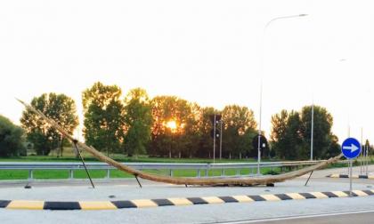 Spino d'Adda, la piroga sulla rotonda si sta sgretolando – TreviglioTv