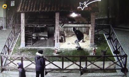 +FLASH+Treviglio : Individuati i ragazzi che hanno rubato la statua del Gesù Bambino – Treviglio TV