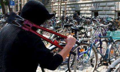 Treviglio – Ruba biciclette, incastrato da un testimone – TreviglioTV