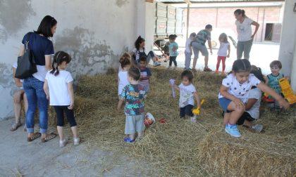 """+FOTO+ Le famiglie del nido """"Il Girasole"""" alla scoperta della cascina – TreviglioTv"""