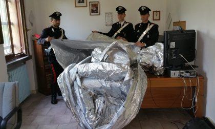 +FLASH+ Anziché spazzare, spazzolavano: arrestati sei addetti alle pulizie della Lidl – TreviglioTv