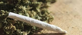 Marijuana al parco, denunciato 20enne romanese. Hashish alle torri di Zingonia – TreviglioTv