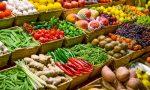 Treviglio: scoppia la polemica tra Pro Loco e commercianti per la vendita di prodotti locali – TreviglioTV