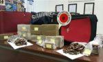 Fratelli trafficanti di droga arrestati a Pumenengo, rifornivano Trieste di hashish – TreviglioTv