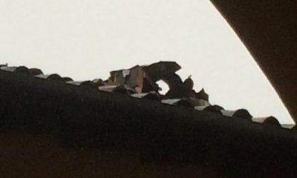 Treviglio: incendio nella notte in via San Martino – TreviglioTV