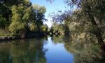Torna il Bioblitz, educazione naturalistica e scientifica delle aree protette lombarde FOTO