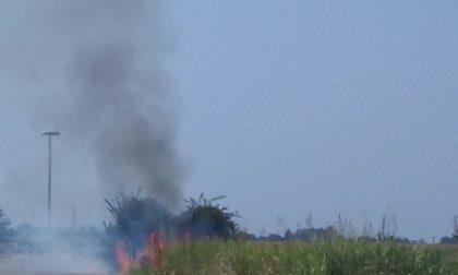 Incendio nella campagna. Tre focolai accesi