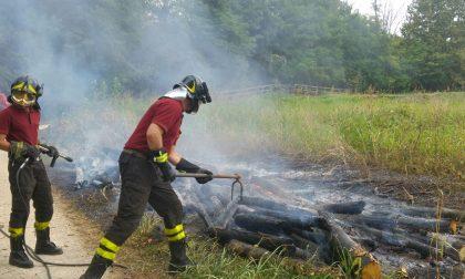 Incendio al bosco del castagno, salvato dai vigili del fuoco