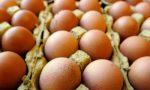"""Uova contaminate: """"Controlli capillari, non arriveranno a tavola"""""""