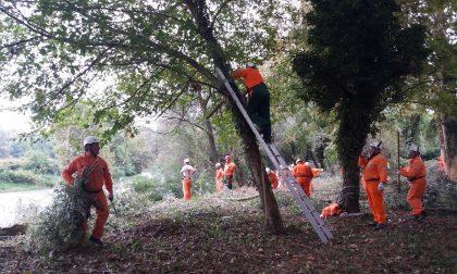 Fiumi sicuri: oltre cento volontari sull'Oglio