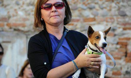Più di cinquante persone (e cani) per la solidarietà: la Baumenengo spopola  FOTO