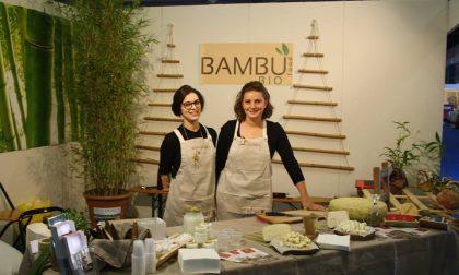 Spopola il bambù e dalla Bassa arriva il primo formaggio bio