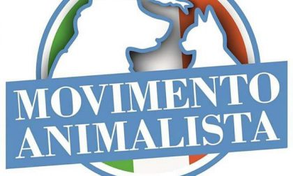 Movimento Animalista arriva a Bergamo