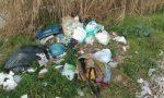 Abbandona rifiuti, multato imprenditore per 200 euro