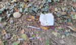 Siringhe abbandonate al parco