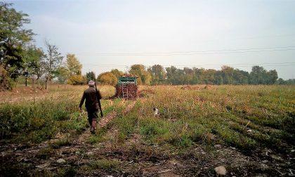 Leggi rebus e pioggia di fagiani: i cacciatori protestano