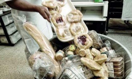 A Caravaggio il progetto Refood: ridurre lo spreco alimentare e aiutare chi ha bisogno