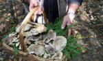 Va a funghi sull'Appennino, bergamasco stroncato da un malore