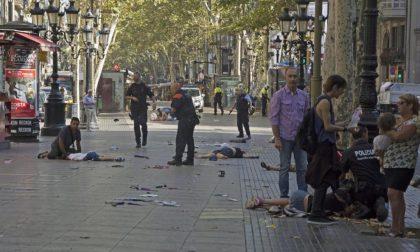 Una lapide per ricordare i caduti dell'Isis, ma il sindaco la censura