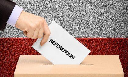 Referendum, i risultati nella Bassa