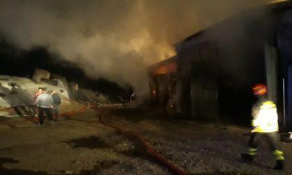 Maxi incendio, brucia una cascina: animali fuggono nei campi FOTO