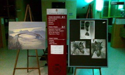 L'arte in Comune: l'artista Sara espone le sue opere nell'atrio del municipio