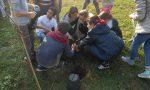 EcoScuola, 335mila euro dai parlamentari del M5S per i progetti delle scuole lombarde
