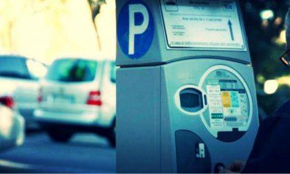 """Ticket parcheggio, Bergamaschi: """"Una trovata elettorale del M5S in ritardo"""""""