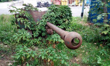 Cannone in discarica: cosa ci fa lì?