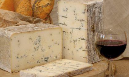 Blu di bufala colognese secondo miglior formaggio al mondo