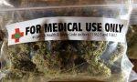 Cannabis per uso terapeutico, la paga lo Stato