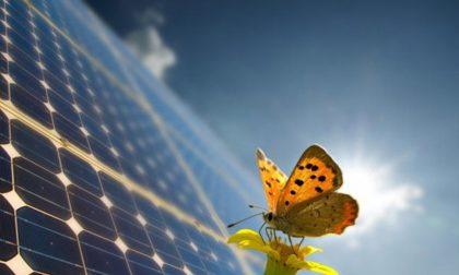 Energy day come consumare meno e meglio