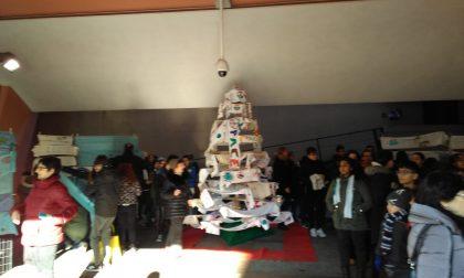 L'albero delle sciarpe per un Natale di pace FOTO