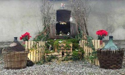 A Barbata Gesù è nato..in un barile di vino FOTO