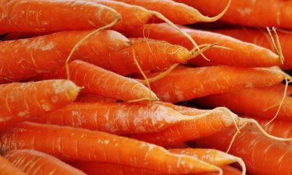 Troppe carote in mensa, scoppia la rivolta