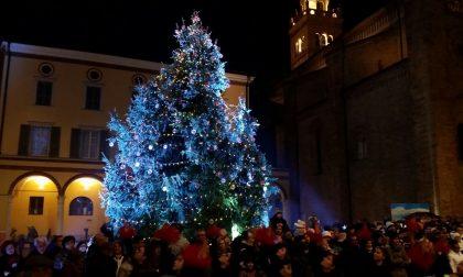 """Natale, acceso l'albero """"Giorgione"""" in piazza FOTO"""