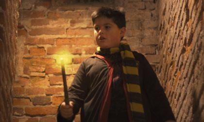 Harry Potter a Soncino con Pro Loco e Montodine Live