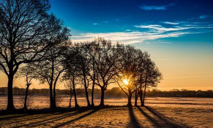 Breve pausa dall'inverno temperature in aumento