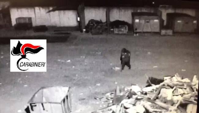 Carabiniere trova ladro in casa e lo arresta con l'aiuto della Polizia