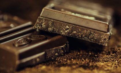 Treviglio Cioccolato, tre giorni di festa per i golosi