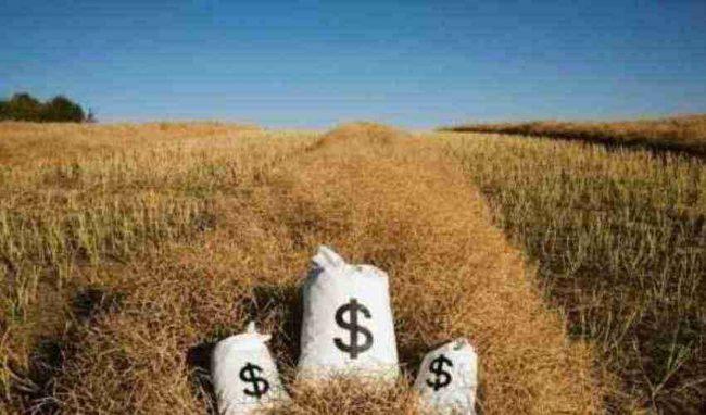 Settore agricolo, novità fiscali con la Bcc Treviglio