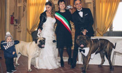 A Brignano i cani degli sposi portano le fedi, quando a Pontirolo fu vietato -Foto