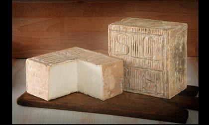 Salva Cremasco superstar, una serata alla scoperta del formaggio dop lombardo