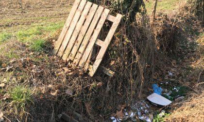 """Rifiuti abbandonati in campagna, l'appello: """"Servono regole chiare"""""""