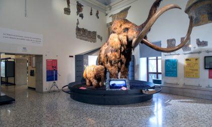 Pasqua con i bambini al museo di Bergamo ci sono i dinosauri