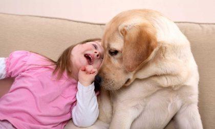 Il parco di Pluto regala la pet therapy ai disabili del Cdd